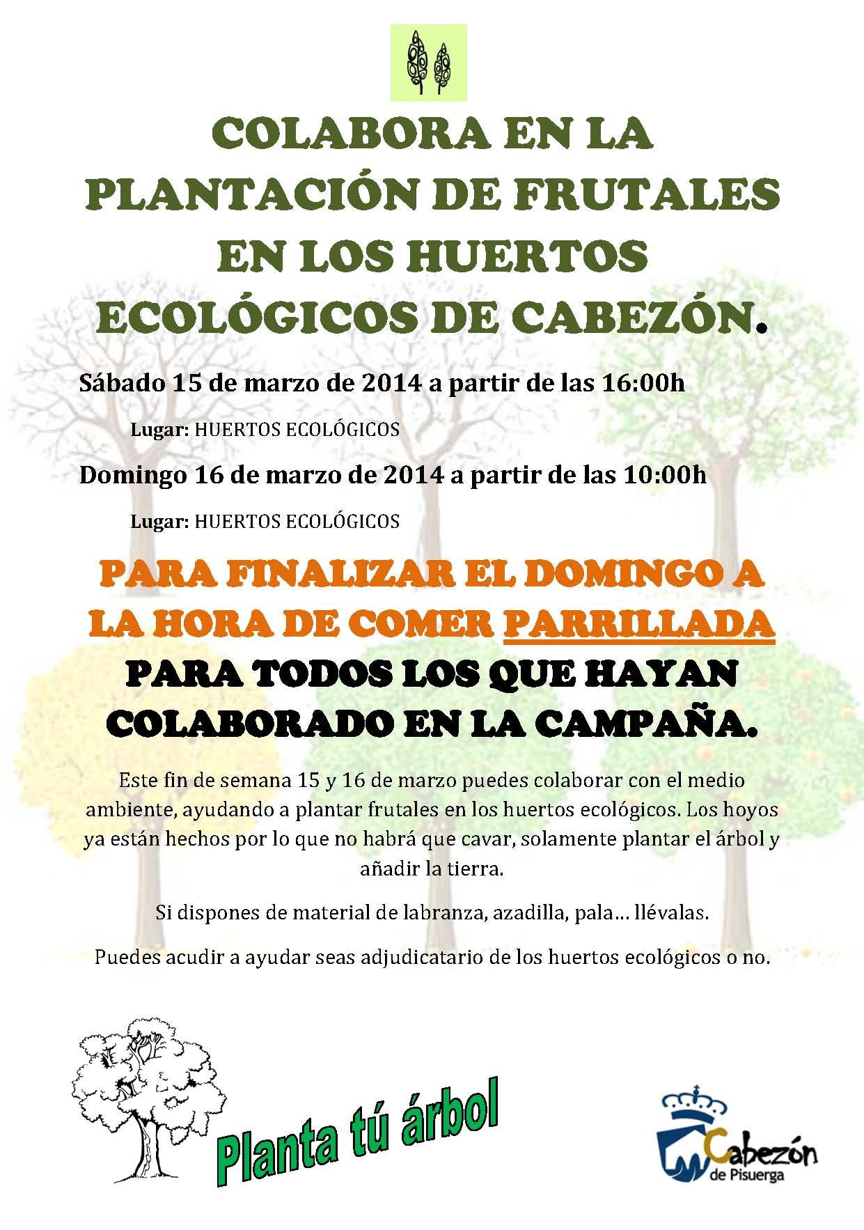 PlantacionArbolesCabezon