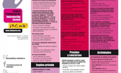 cartel_juventud_270 rosa