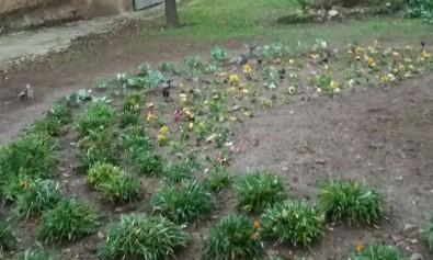 jardinIglesia1